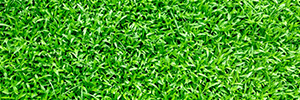 Artificial Grass Installation Cost Guide (Updated for 2019)